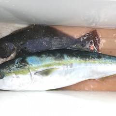 1月 15日(水) 午前便・ヒラメ釣りの写真その11