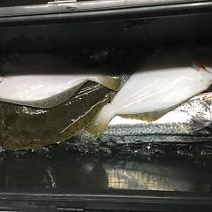 1月 16日(木) 午後便・ヒラメ釣りの写真その2