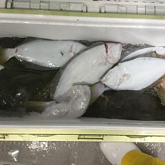1月 16日(木) 午後便・ヒラメ釣りの写真その3