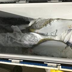 1月 16日(木) 午後便・ヒラメ釣りの写真その4