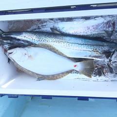 1月 18日(土) 午前・午後・ヒラメ釣りの写真その6