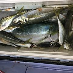 1月 31日(金) 午前・ヒラメ釣り 午後・アジ釣りの写真その4