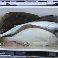 2月 12日(水) 午前便・ヒラメ釣りの写真その4