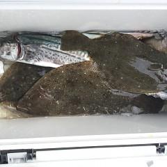 2月 12日(水) 午前便・ヒラメ釣りの写真その5