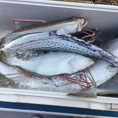 2月 12日(水) 午前便・ヒラメ釣りの写真その7