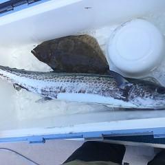 2月 12日(水) 午前便・ヒラメ釣りの写真その8