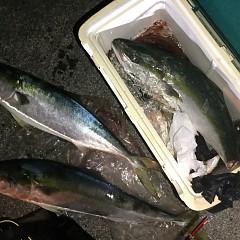 2月 13日(木) 午後便・アジ釣りの写真その3