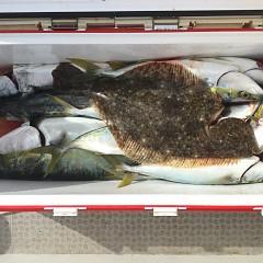 2月 19日(水) 午前便・ヒラメ釣りの写真その4