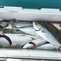 2月 19日(水) 午前便・ヒラメ釣りの写真その5