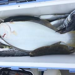 2月 19日(水) 午前便・ヒラメ釣りの写真その8