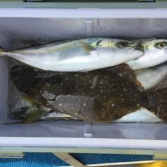 2月 19日(水) 午前便・ヒラメ釣りの写真その9