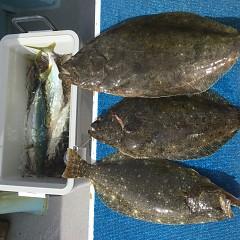 2月 19日(水) 午前便・ヒラメ釣りの写真その10