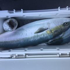 2月 21日(金) 午前便・ヒラメ釣りの写真その8