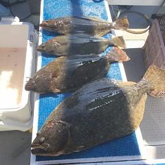 2月 24日(月) 午前便・ヒラメ釣りの写真その6