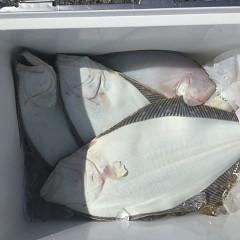 2月27日(木)午前便・ヒラメ釣りの写真その1