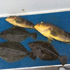 2月 29日(土) 午前便・ヒラメ釣り 午後便・アジ釣りの写真その2