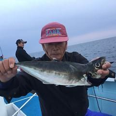4月 3日(金) 午後便・アジ釣りの写真その1