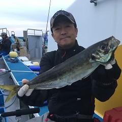 4月 3日(金) 午後便・アジ釣りの写真その2
