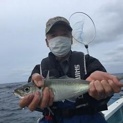 5月 22日(金) 午前・午後・アジ釣りの写真その1