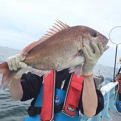 5月 30日(土) 午後便・ウタセ真鯛の写真その2