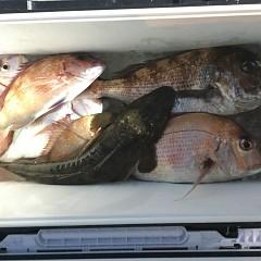 5月31日(日)午後便・ウタセ真鯛釣りの写真その6