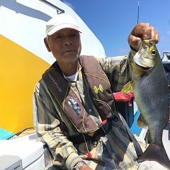 6月 24日(水) 午前・午後・イサキ、アジ釣りの写真その4