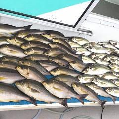 6月 27日(土) 午前、午後・イサキ釣りの写真その7