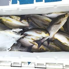 6月 28日(日) 午前、午後・イサキ釣りの写真その2