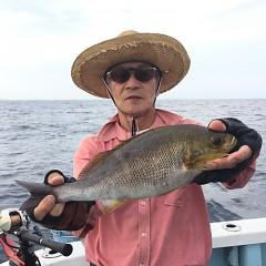 6月 29日(月) 午前、午後・イサキ釣りの写真その2