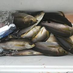 7月5日(日)午前・午後便・イサキ釣りの写真その8