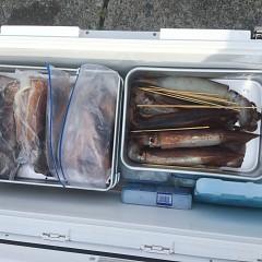 7月 29日(水) 1日便・スルメイカ釣りの写真その4