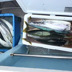 8月 3日(月) 午前便・タテ釣りの写真その10