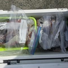8月 9日(日) 1日便・スルメイカ釣りの写真その9