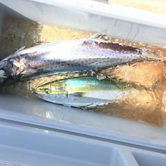 8月 23日(日) 午前便・タテ釣りの写真その6