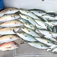 9月11日(金)午前便・タテ釣りの写真その1