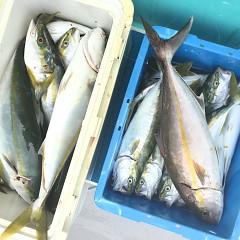 9月11日(金)午前便・タテ釣りの写真その2