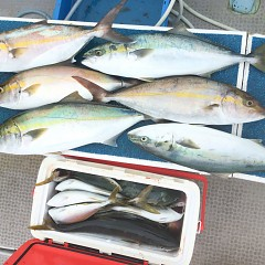 9月11日(金)午前便・タテ釣りの写真その8
