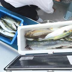 9月11日(金)午前便・タテ釣りの写真その10