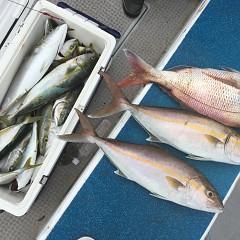 9月11日(金)午前便・タテ釣りの写真その11