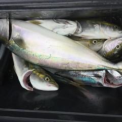 9月 13日(日) 午前便・タテ釣りの写真その8