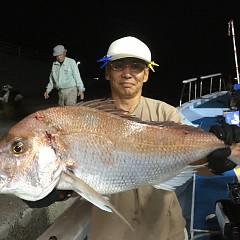9月 13日(日) 午後便・ウタセ真鯛の写真その2