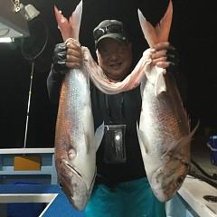 9月 13日(日) 午後便・ウタセ真鯛の写真その3