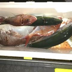 9月 13日(日) 午後便・ウタセ真鯛の写真その10