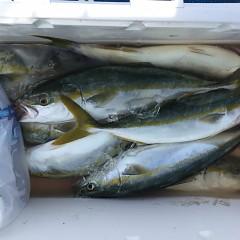 9月 18日(金) 午前・タテ釣り 午後・ウタセ真鯛の写真その4
