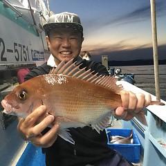 9月 21日(月) 午後便・ウタセ真鯛の写真その3