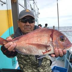 9月 26日(土) 午前便・ウタセ真鯛の写真その5