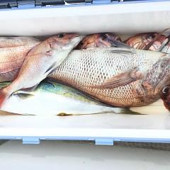 9月 26日(土) 午前便・ウタセ真鯛の写真その8