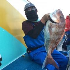 9月 27日(日)午前・タテ釣り 午後・ウタセ真鯛の写真その6