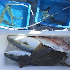 9月 28日(月) 午前・タテ釣り 午後・ウタセ真鯛の写真その1