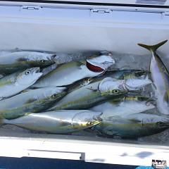 9月 28日(月) 午前・タテ釣り 午後・ウタセ真鯛の写真その2